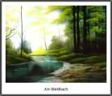 Am Waldbach© Herr Kohlhase
